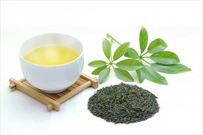高級宇治茶(抹茶・緑茶)は【ふじや茶舗】の通販で