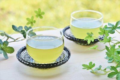 京都の高級な煎茶を通販で取り寄せて贅沢な時間を演出