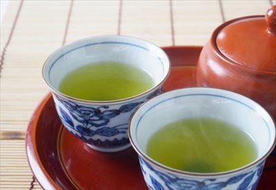 おいしい煎茶を自宅用・業務用に通販で購入したいとき~味や香りに自信ある【ふじや茶舗】へ~