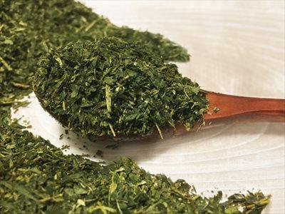 粉末タイプ vs ティーバッグタイプ~定番の茶葉と何が変わるの?~